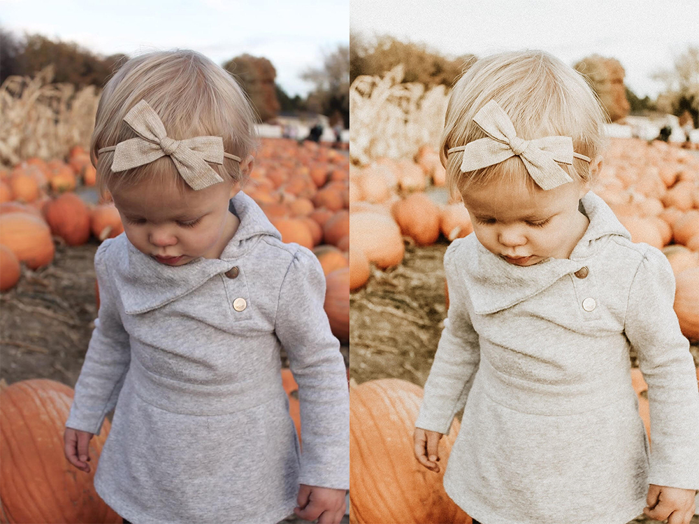 Fall Set — KALLIE PORTER PHOTOGRAPHY