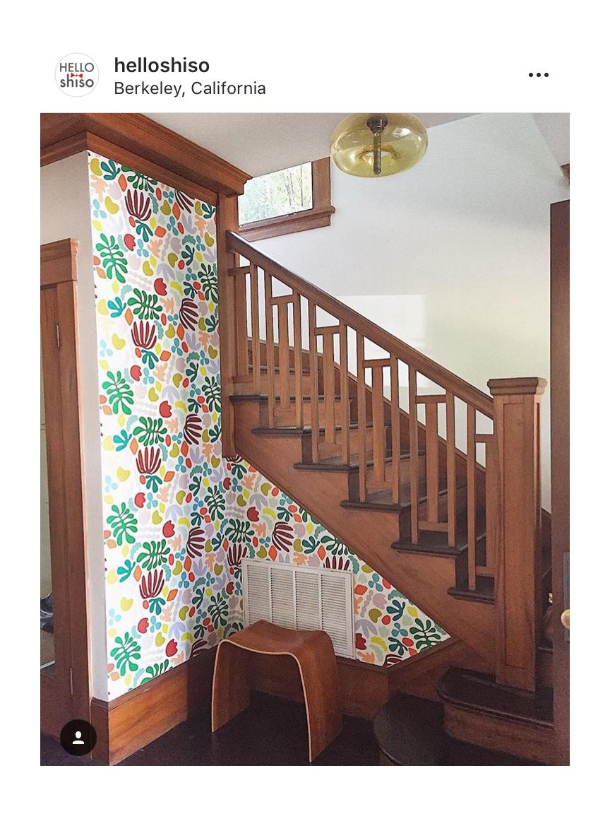 Muse Wallpaper In Multicolor Kate Zaremba Company