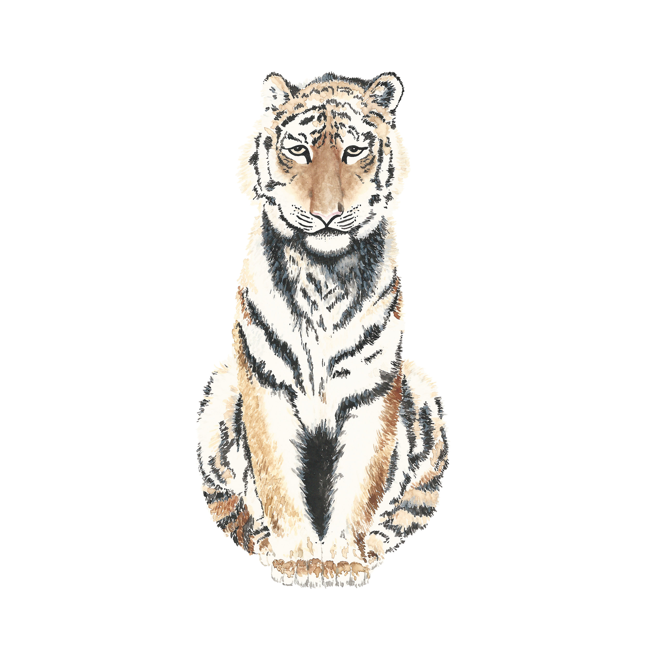 Tiger - Watercolor Print — Louise Dean Design LLC