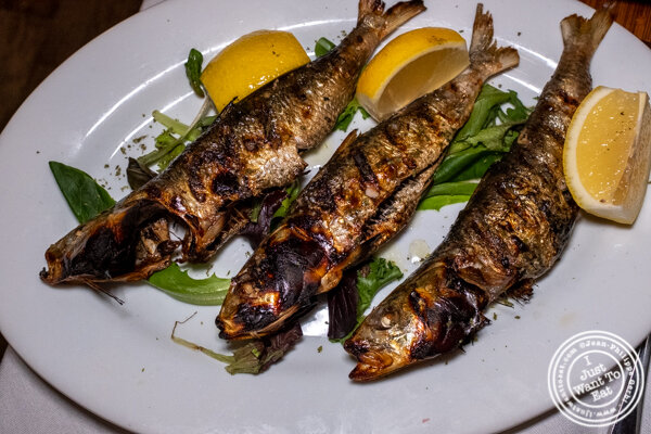 Sardines at Ammos Estiatorio in 纽约市, NY
