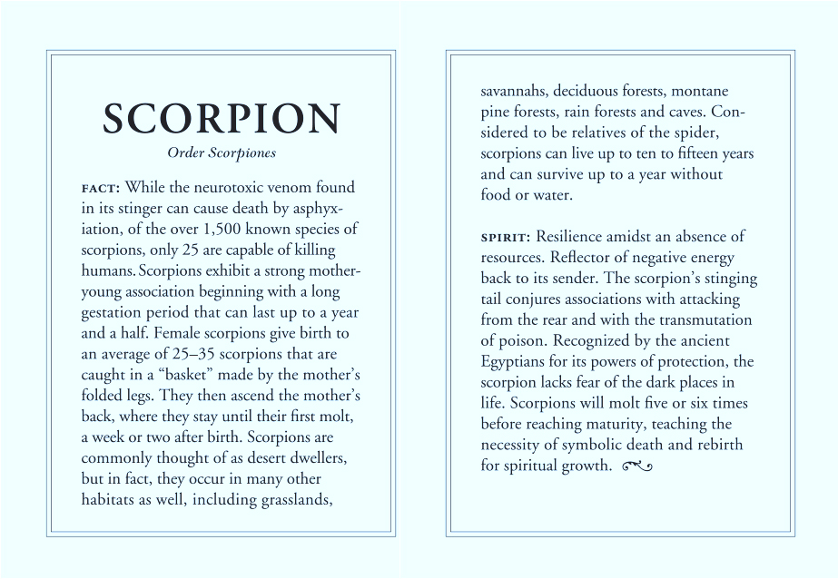 picture regarding Large Solid Printable Numbers referred to as Enormous Scorpion Potent 14k Gold Necklace j.herwitt