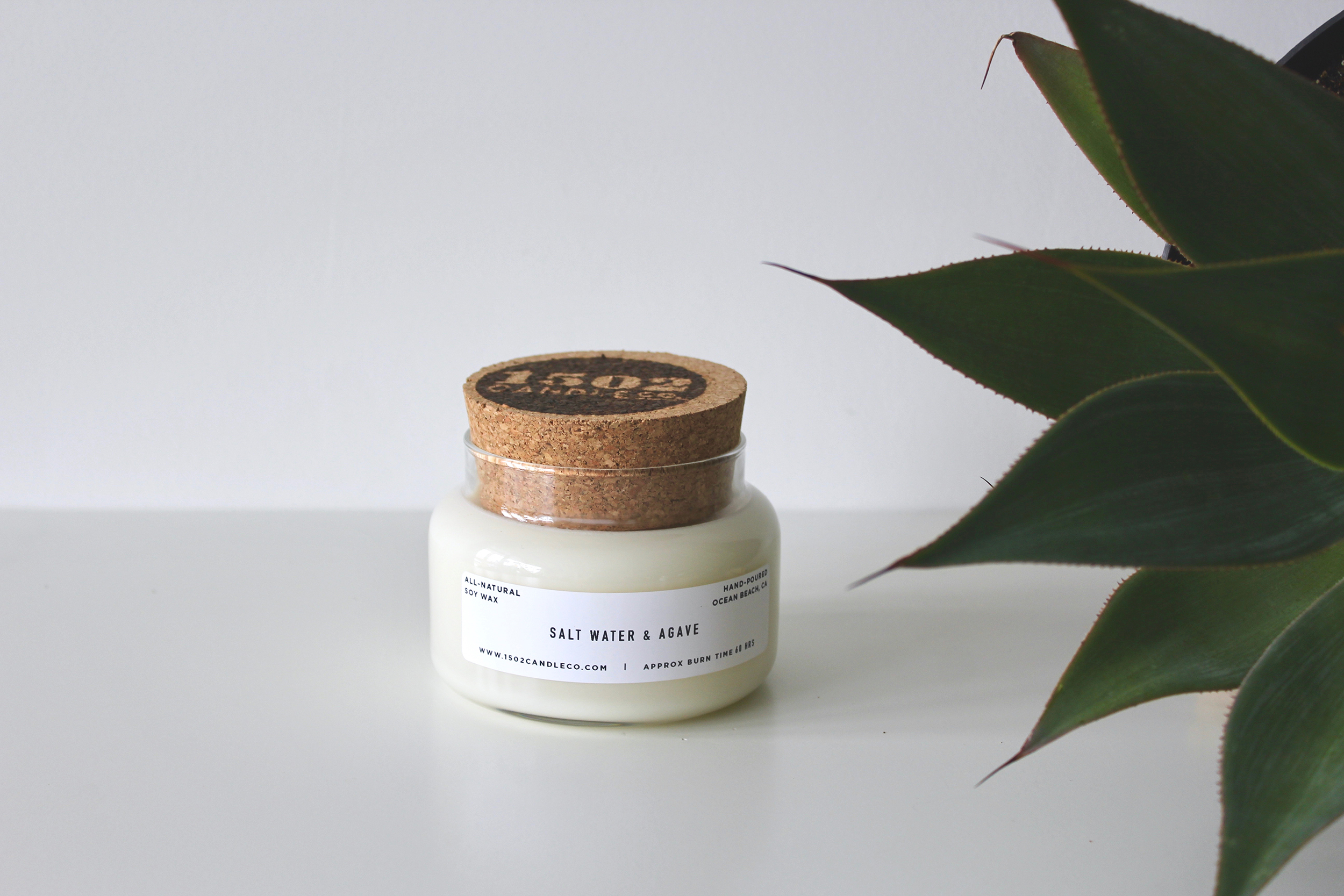Salt Water Agave Soy Candle 15 Oz Apothecary Jar 1502 Candle Co