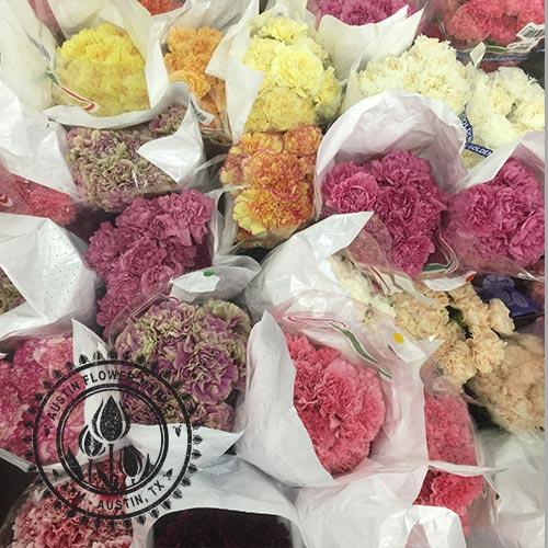 Carnations Austin Flower Market