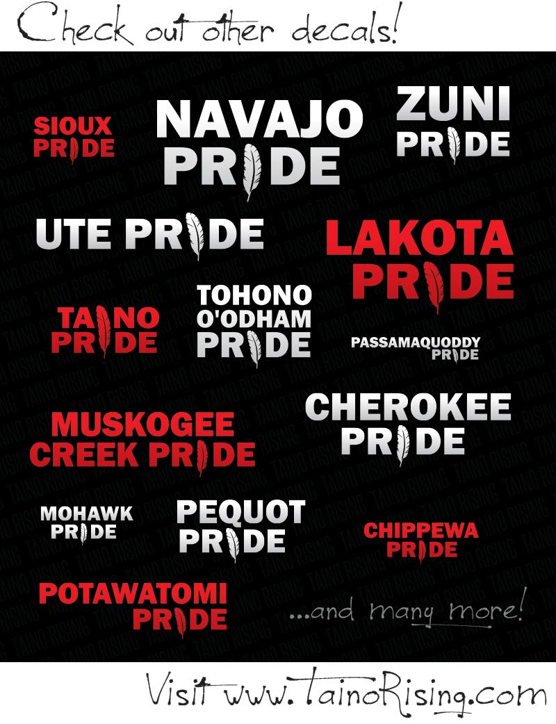 Native PrideVinyl Decal Sticker