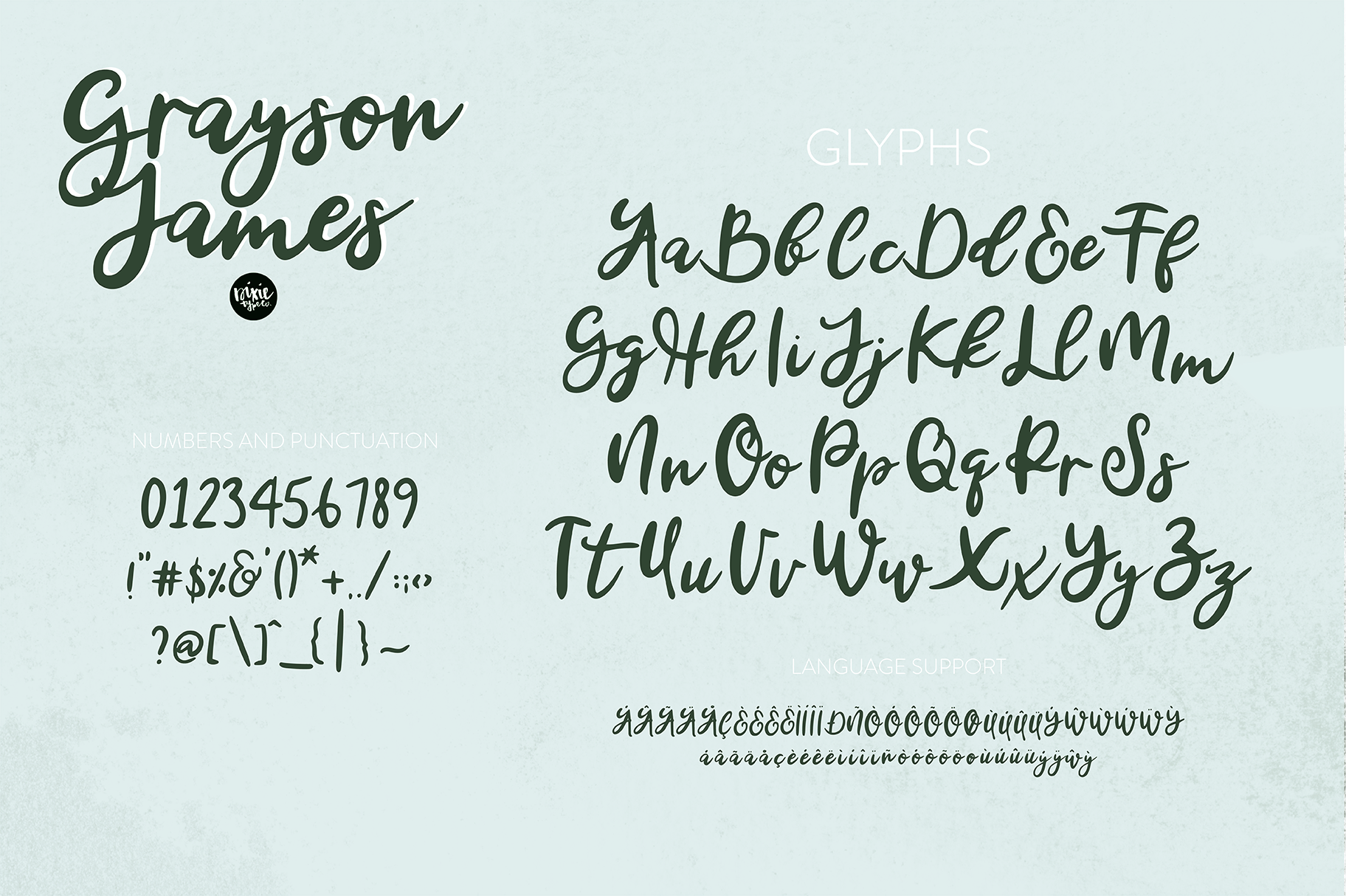GRAYSON JAMES Bold Italic Hand Lettered Script Font — DIXIE TYPE CO