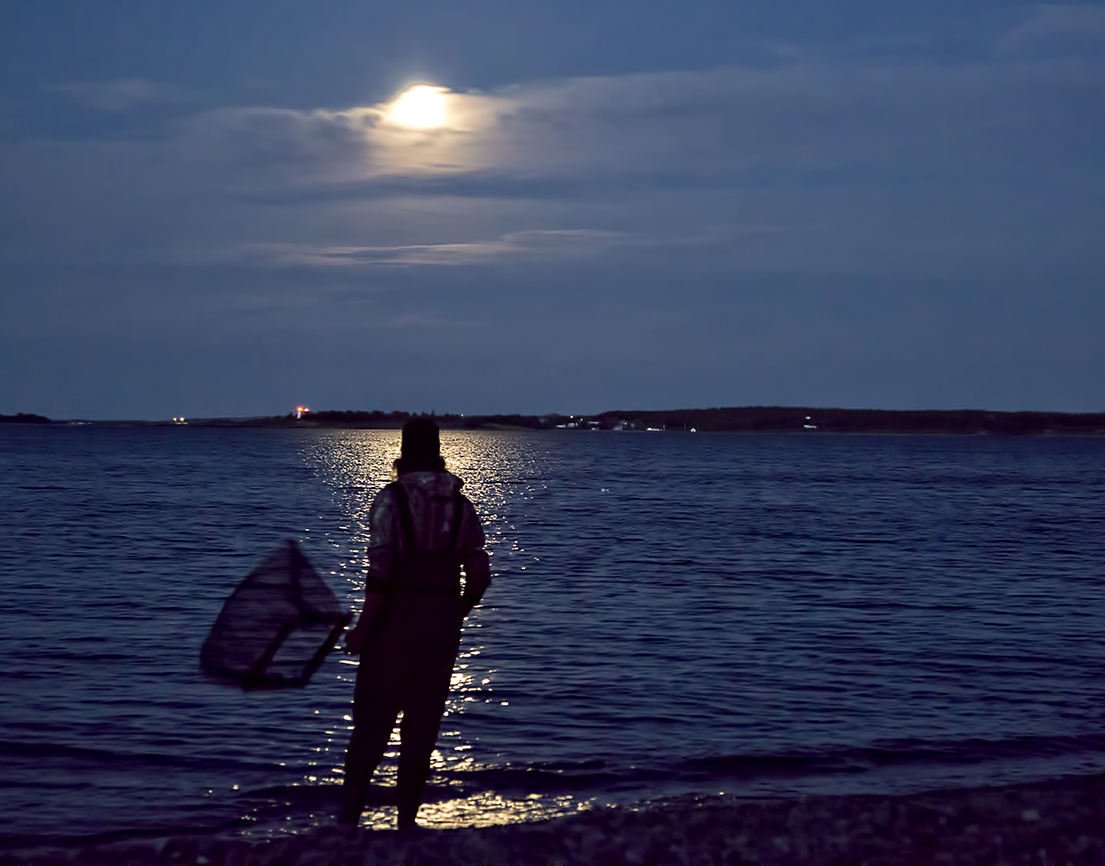 A man stands in the light of the moon, net ready, waiting for the Capelin to run toward shore...