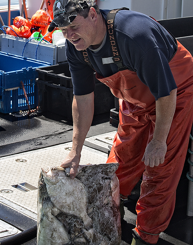 Lobstermen use different kinds of bait. This man holds up frozen flounder he buys in blocks. Main a Dieu, Cape Breton.