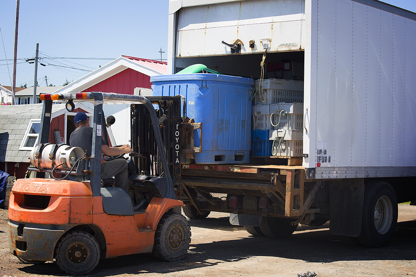 Lobsters are loaded onto a waiting truck where they will be driven to Louisburg and sent to various parts of the world.