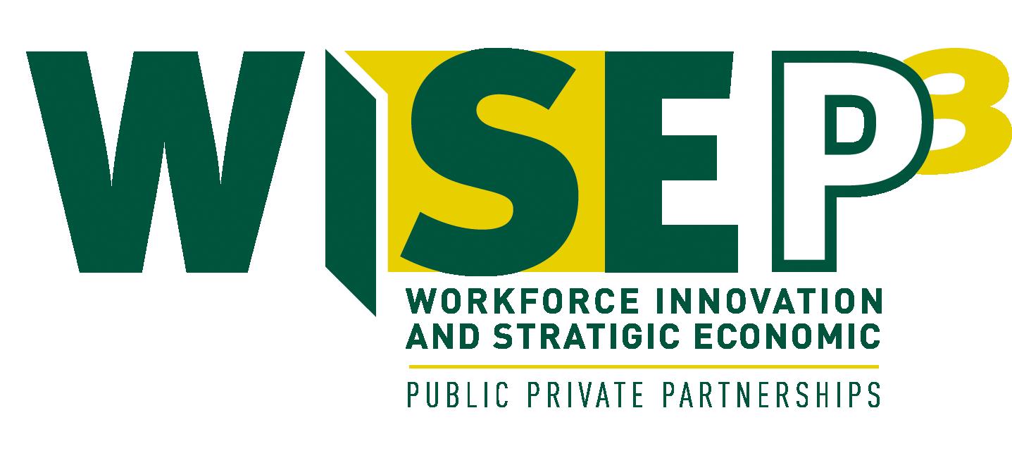 WISE P3 Logo.png