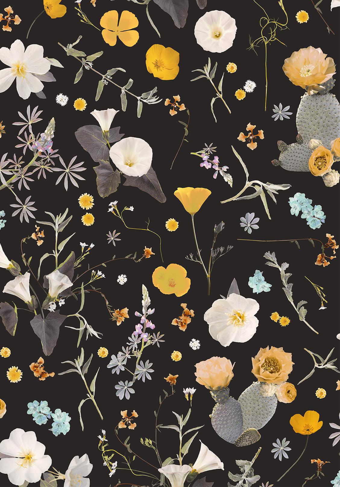 California Native Removable Fabric Wallpaper Peel And Stick Samantha Santana