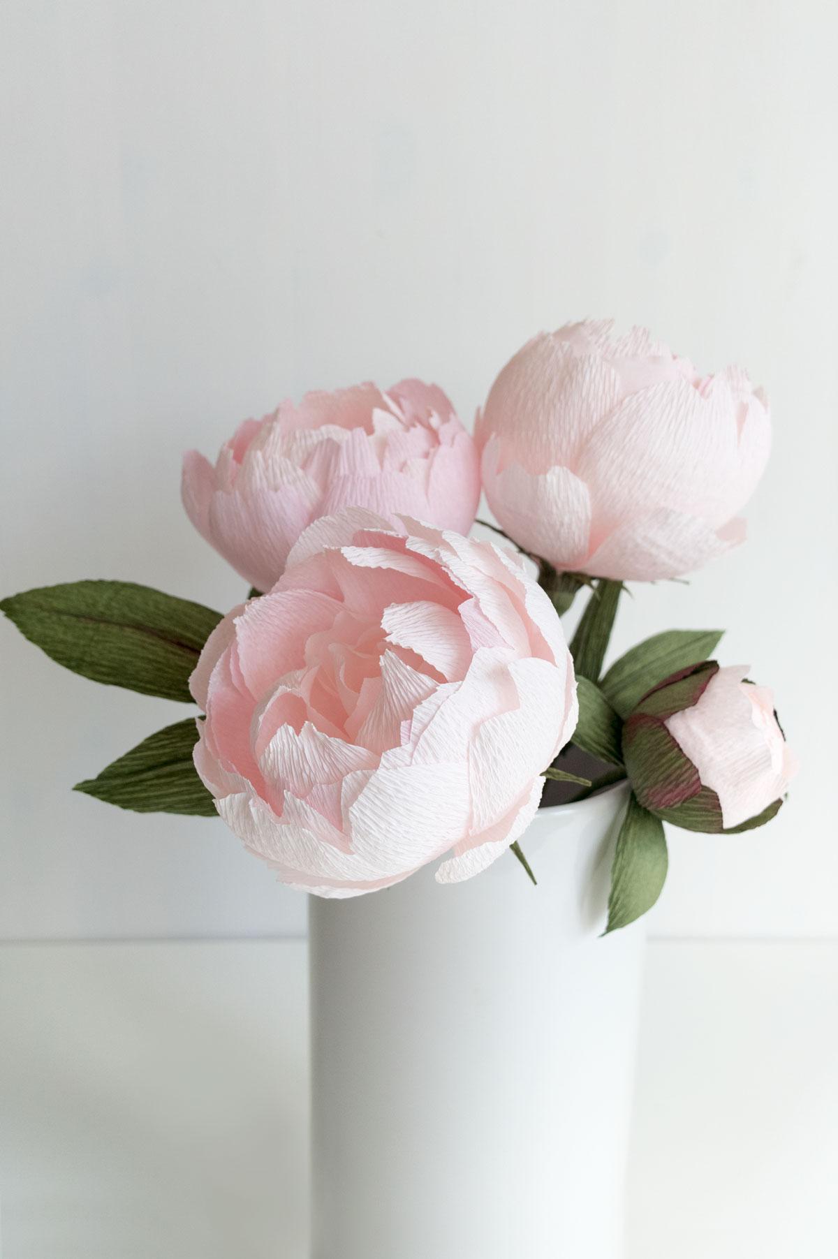Blush Peonies Paper Rose Co