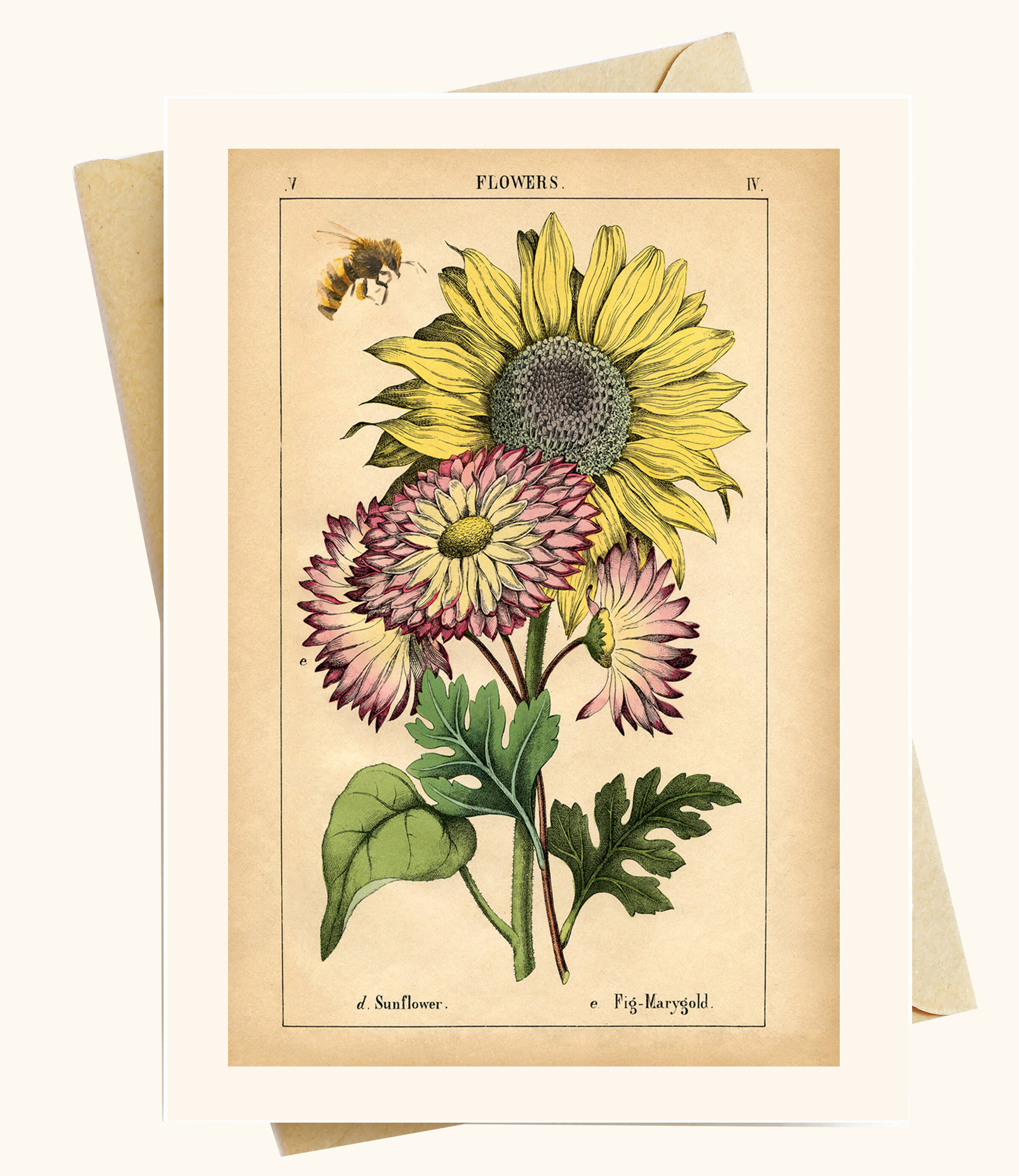 yellow flower and bee note cardsset of 4 flower note cards blank inside