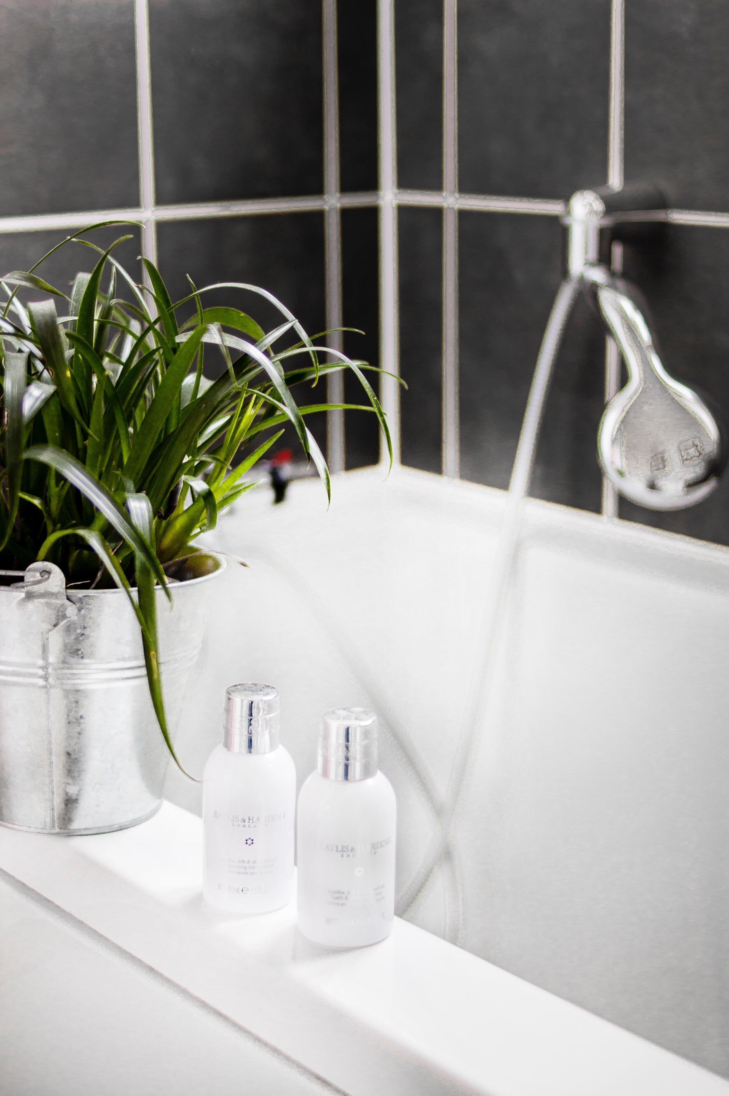 两个-白瓶- -盆栽植物-在浴缸旁边2008269.jpg