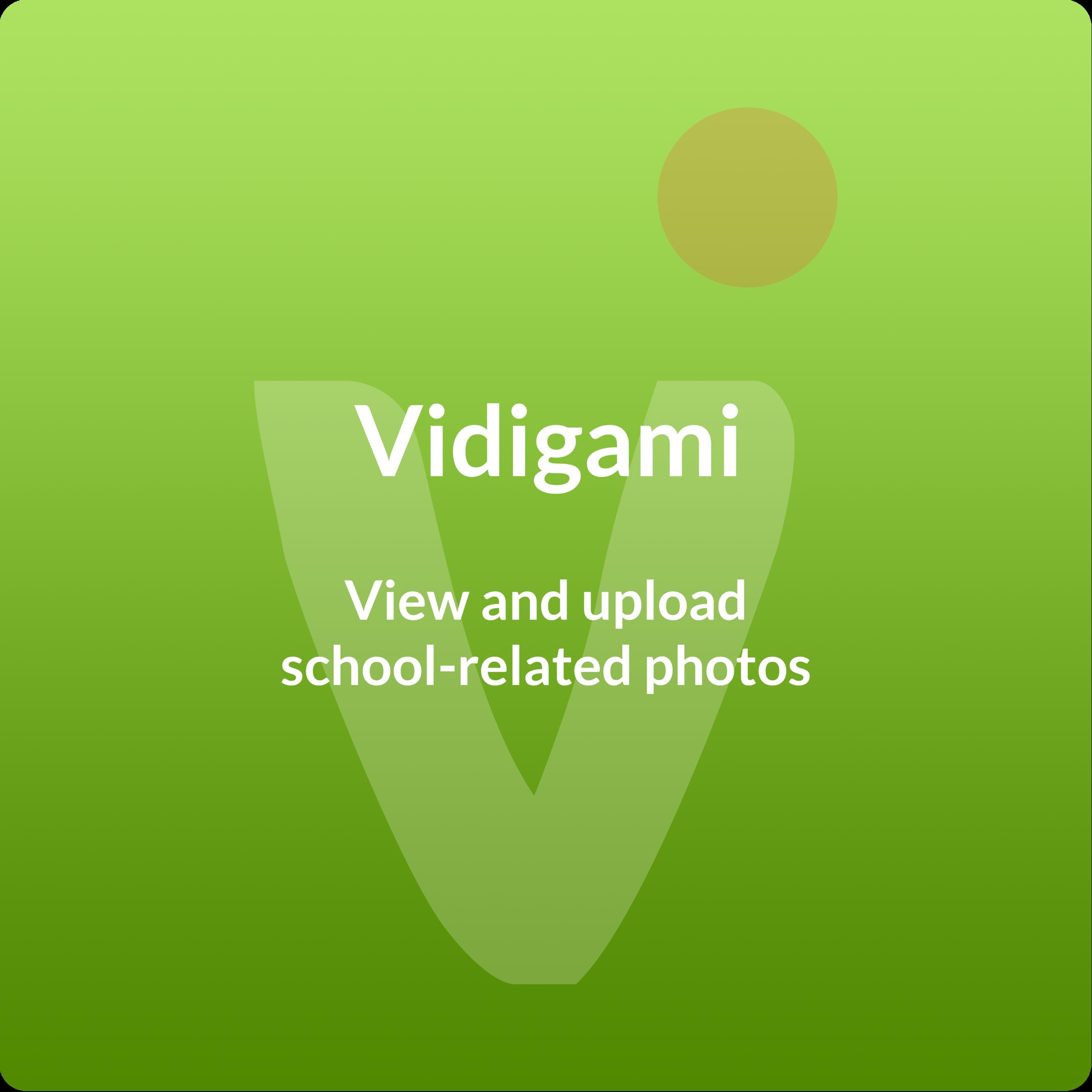 portal_vidigami_block.png