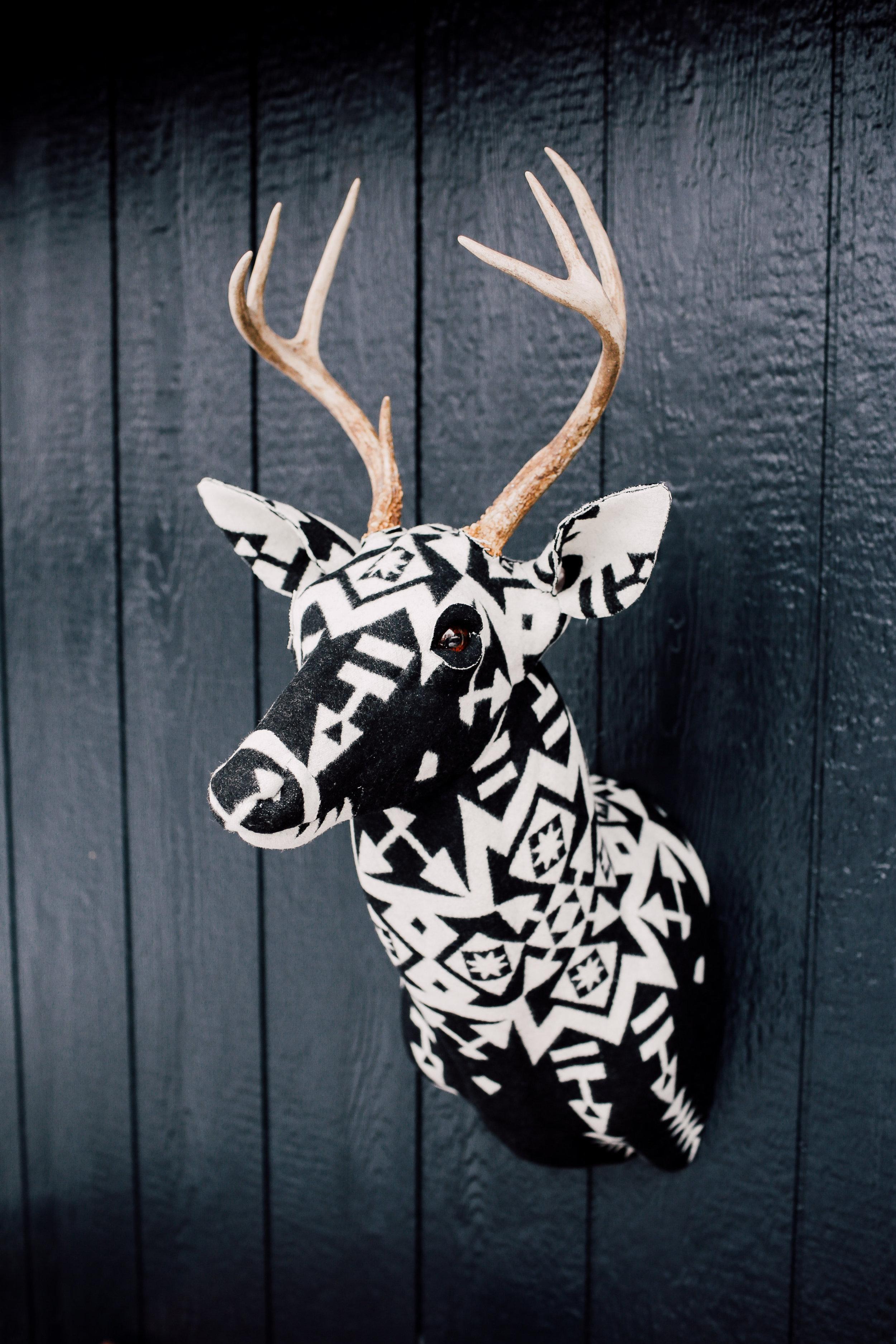 The Buck — Faraway Lovely