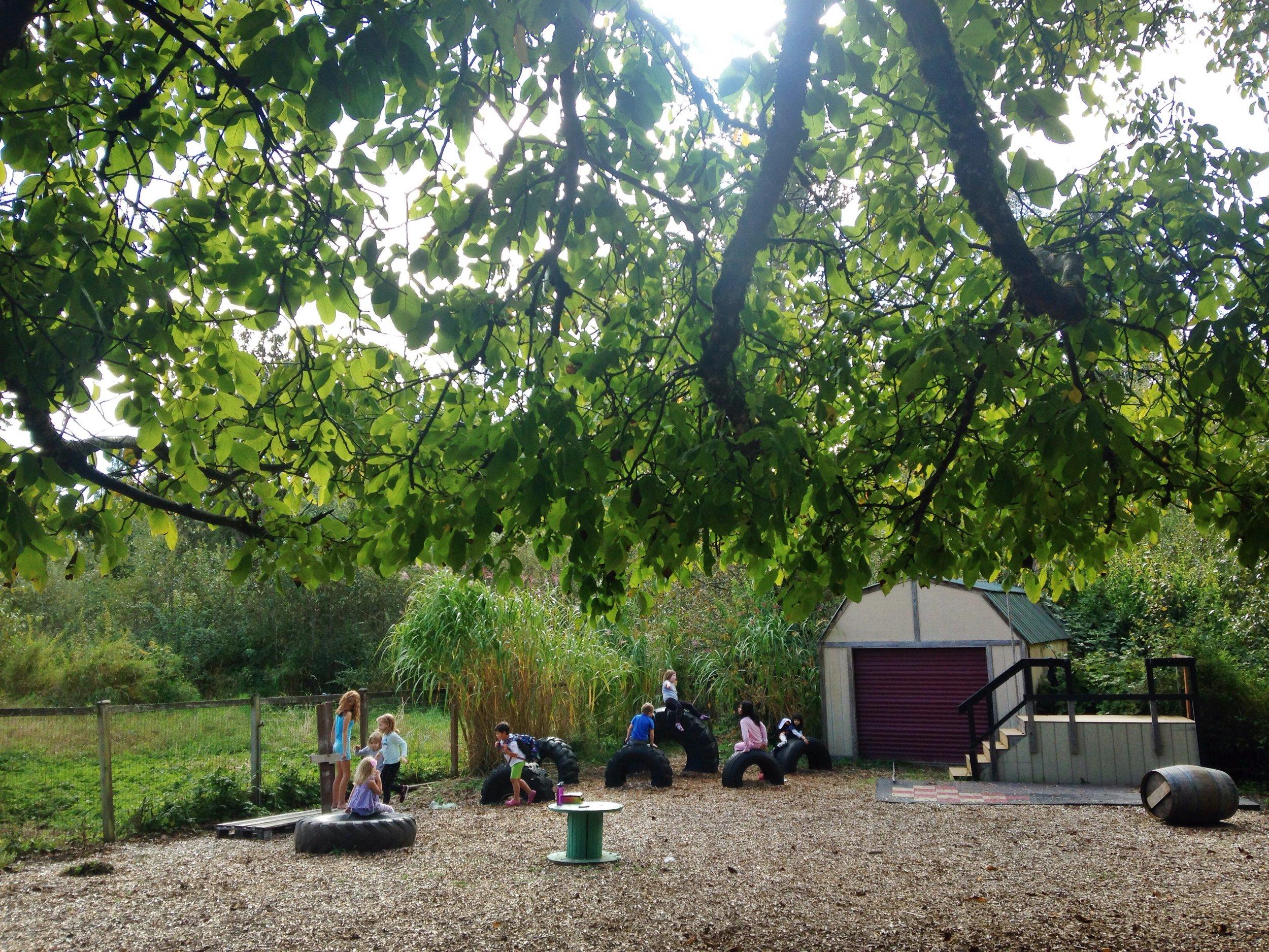 学生们在操场上玩耍,在木片上奔跑,或者坐在嵌在地上的轮胎上.