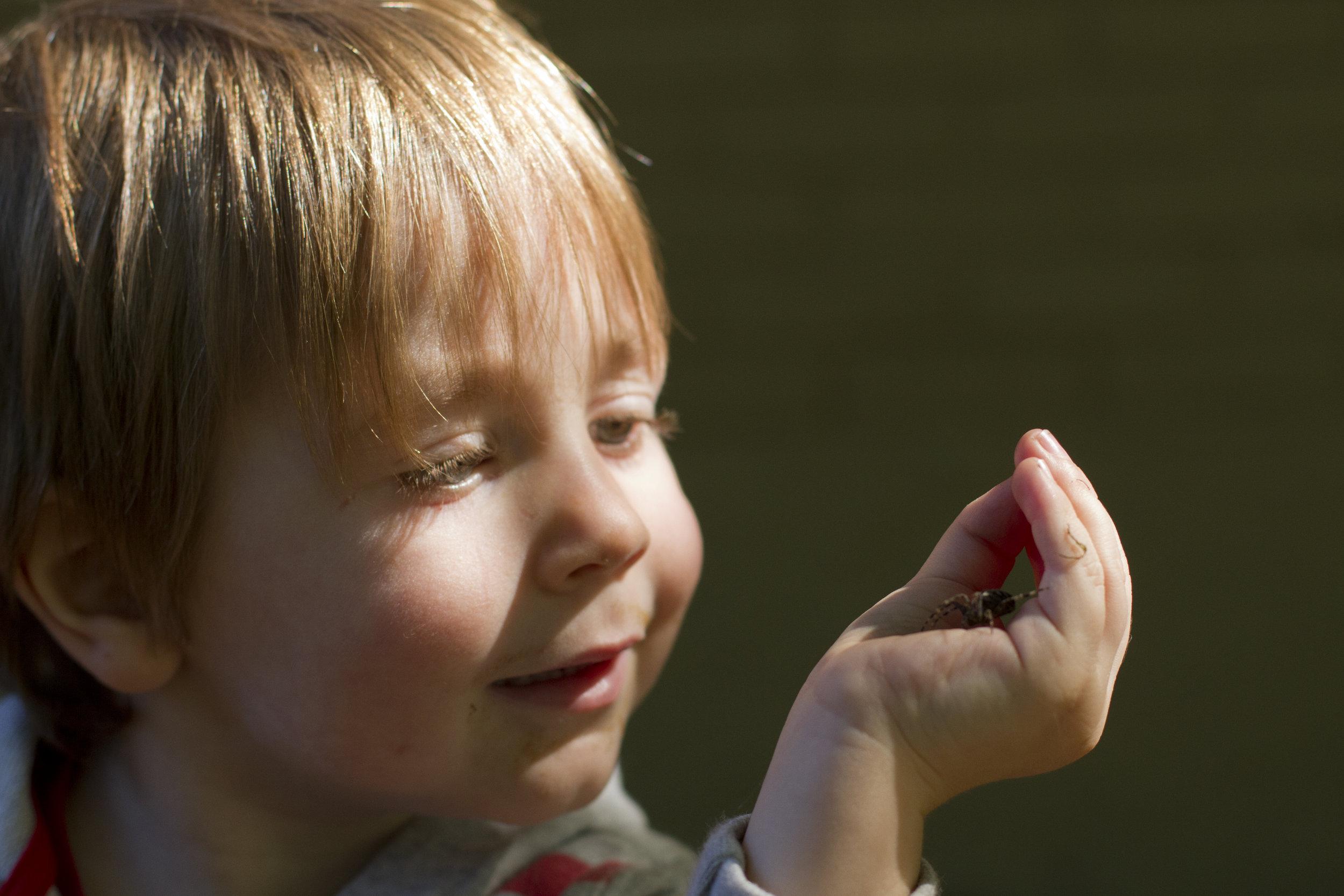 一个年轻的学生看着他们手中拿着的一只蜘蛛.