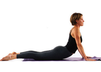 Yoga Poses For Beginners 2 Cec S National Fitness Professionals Association