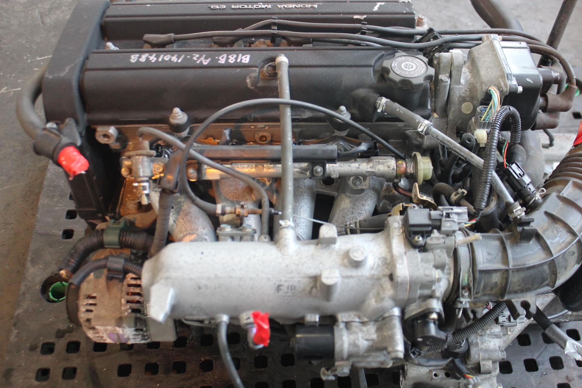Honda Integra LS 1 8L DOHC Non Vtec Engine Only JDM B18B — JDM ENGINES  DIRECT!
