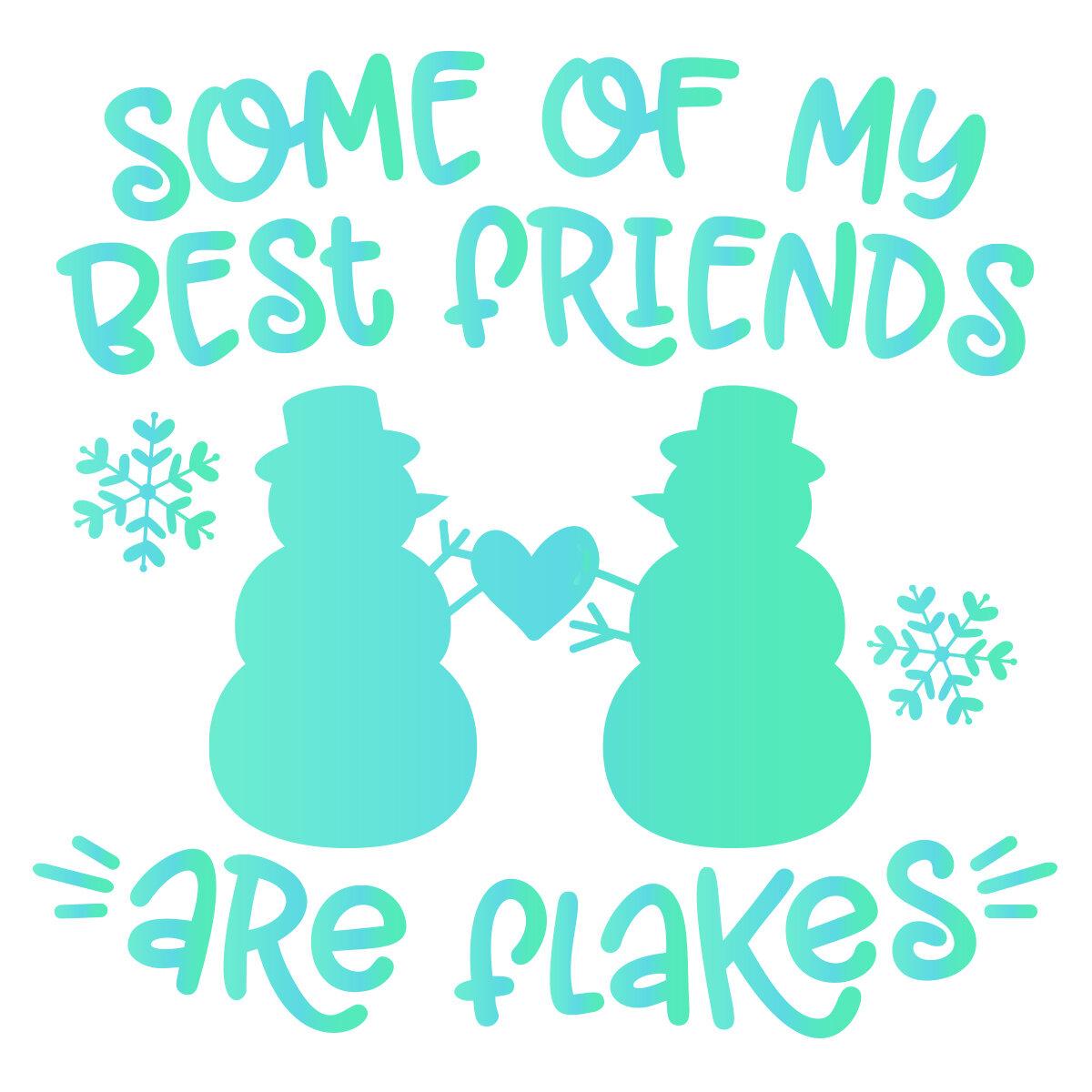 Jld Best Friends Are Flakes Jamieandjenn Com