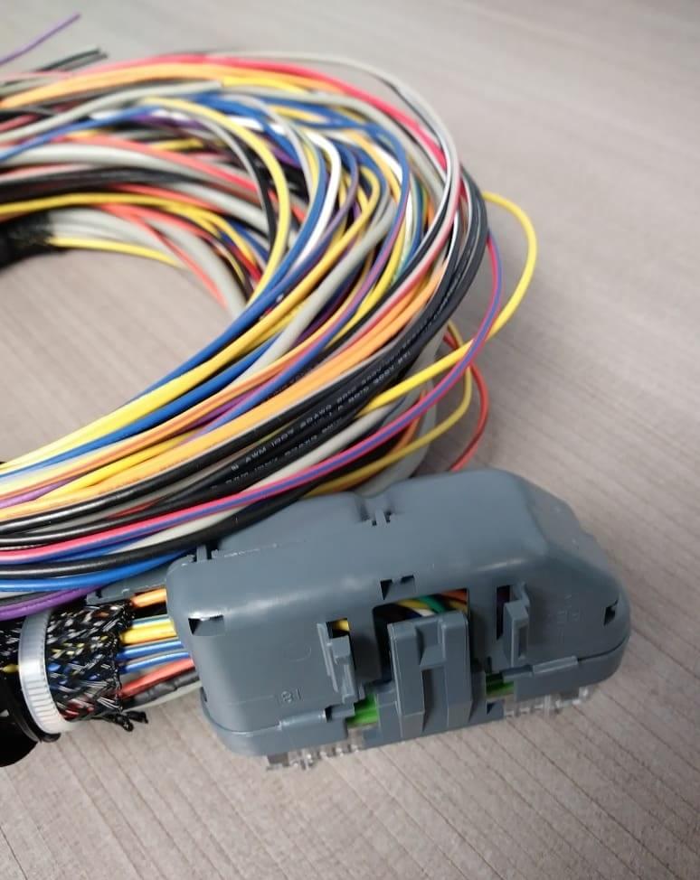 Haltech Wire Harness on