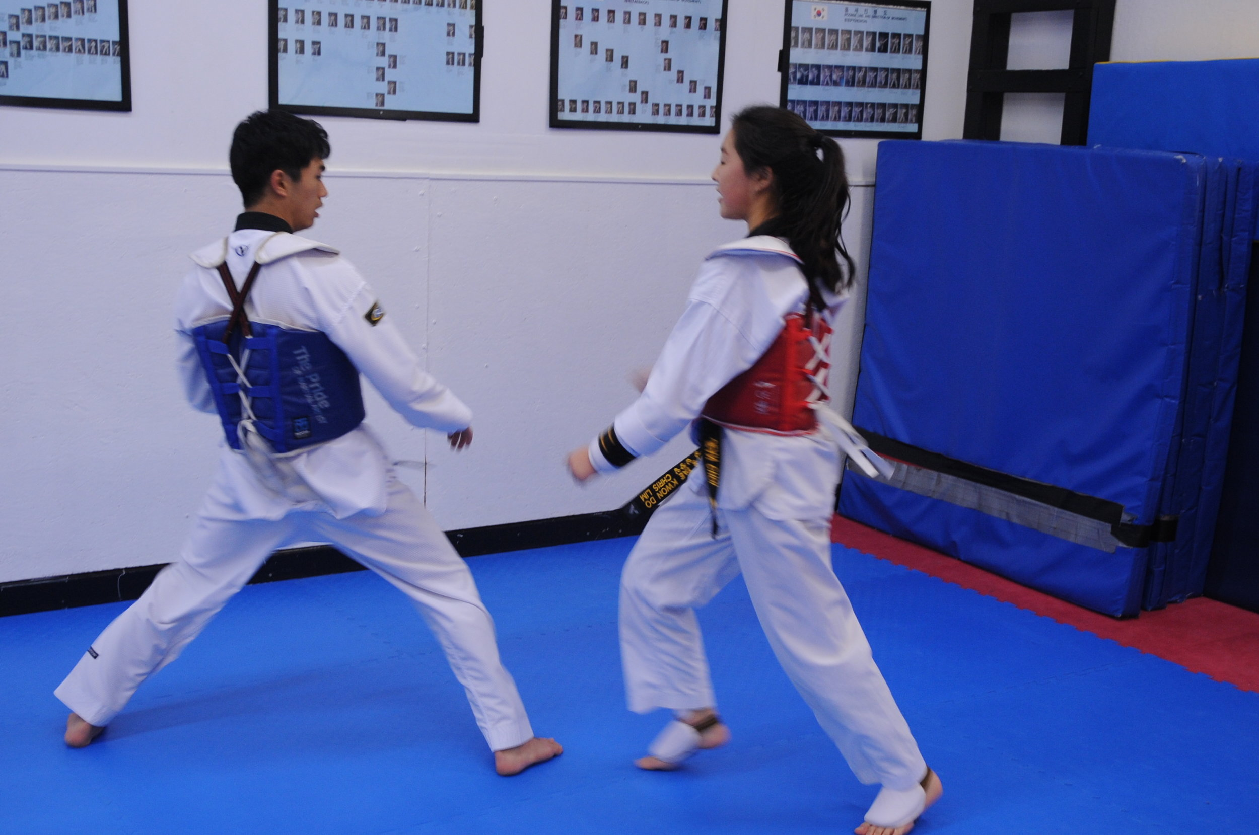 Sparring Gear Full Kit — Lim's Taekwondo