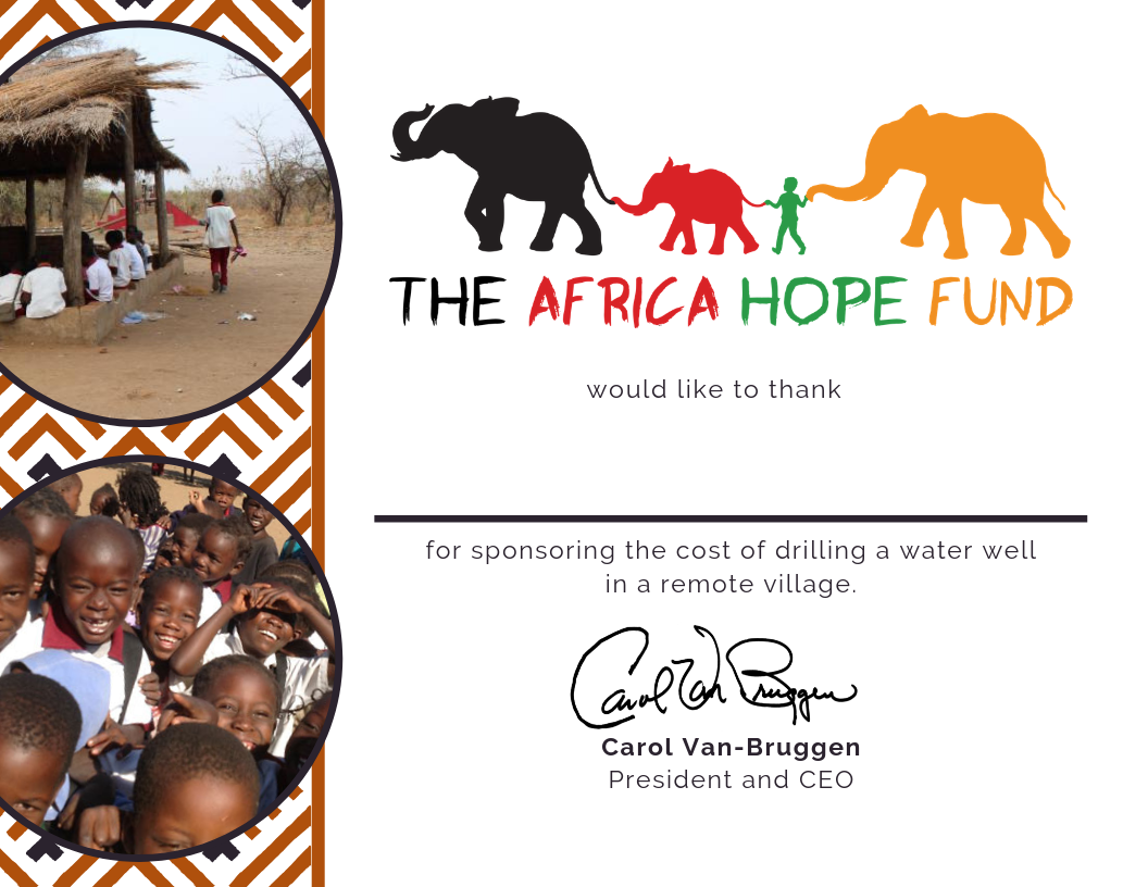 Provide a Water Well to a Remote Village — Africa Hope Fund