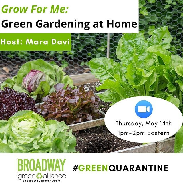 Calling all aspiring Green Thumbs!  Get your hands dirty in this #GreenQuarantine session that dives into the world of home gardening. 🌿 @maradavi will cover green gardening best practices for both city and non-city dwellers alike, taking us through examples of planting in pots and raised beds.Registration link in bio! #BroadwayGreen #GreenGarden #GreenGardens #Permaculture #RegenerativeAgriculture #SustainableGardening
