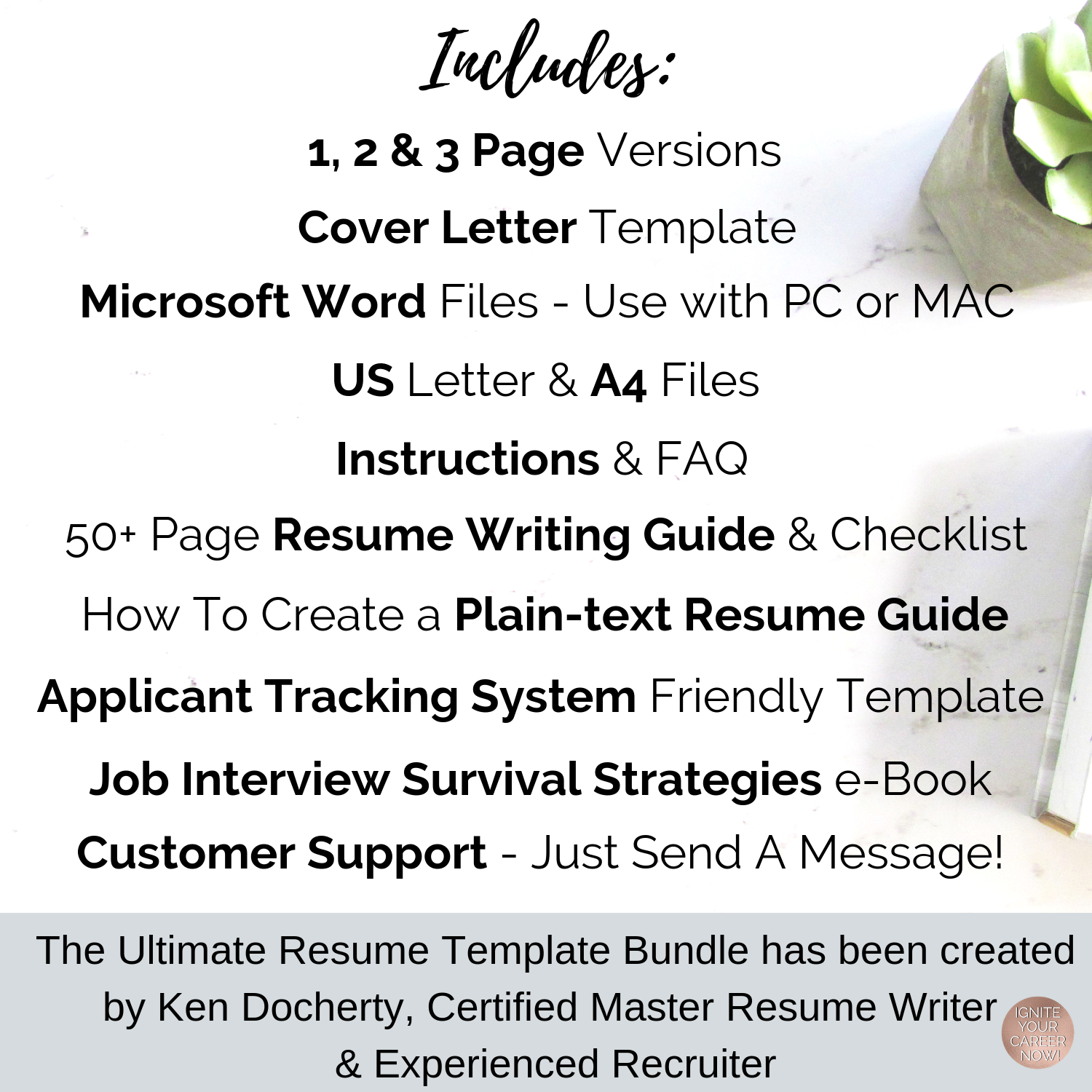 Simple Resume Template Receptionist Other Professions Ken