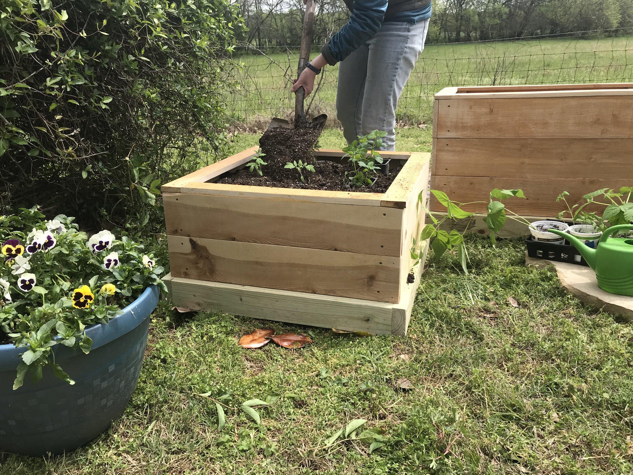 Mini Raised Cedar Garden Bed Includes Soil Plants