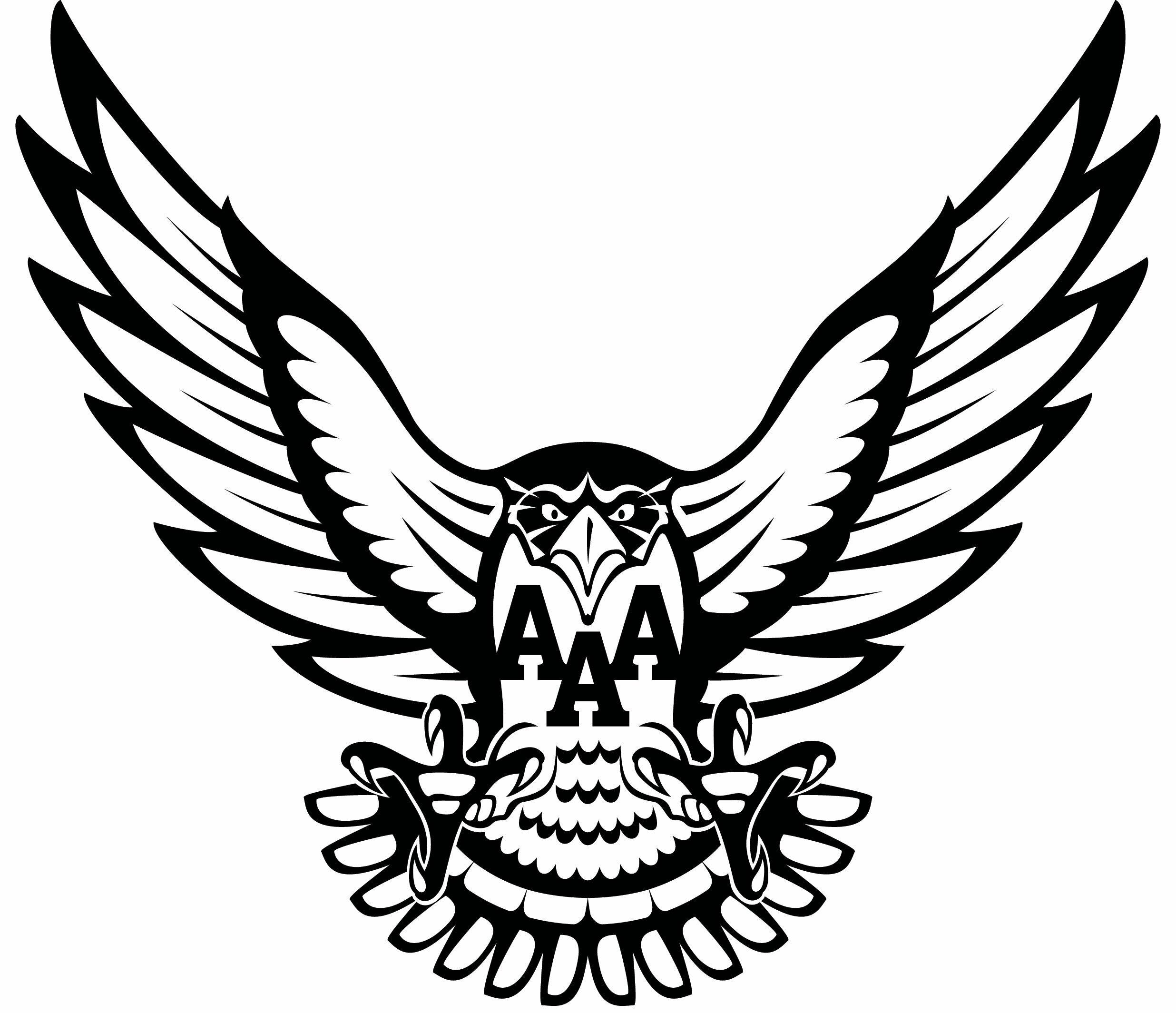 猎鹰.jpg