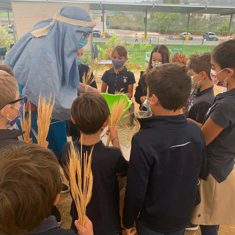 AG娱乐的GMLS学生正AG娱乐APP花园通过实践活动了解七夕节. 采摘小麦,磨成面粉, 使用鲜花制作艺术,制作传统的七十五节甜点🌺🌾#sdja #gmls #七十五节#犹太教育#体验教育