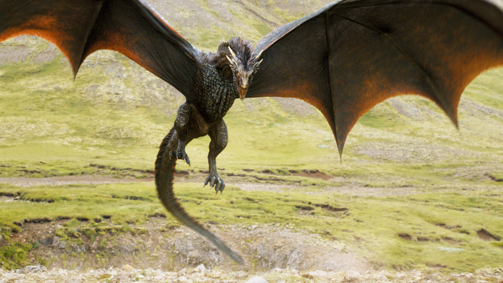Dragons belonging to Daenerys Targaryen