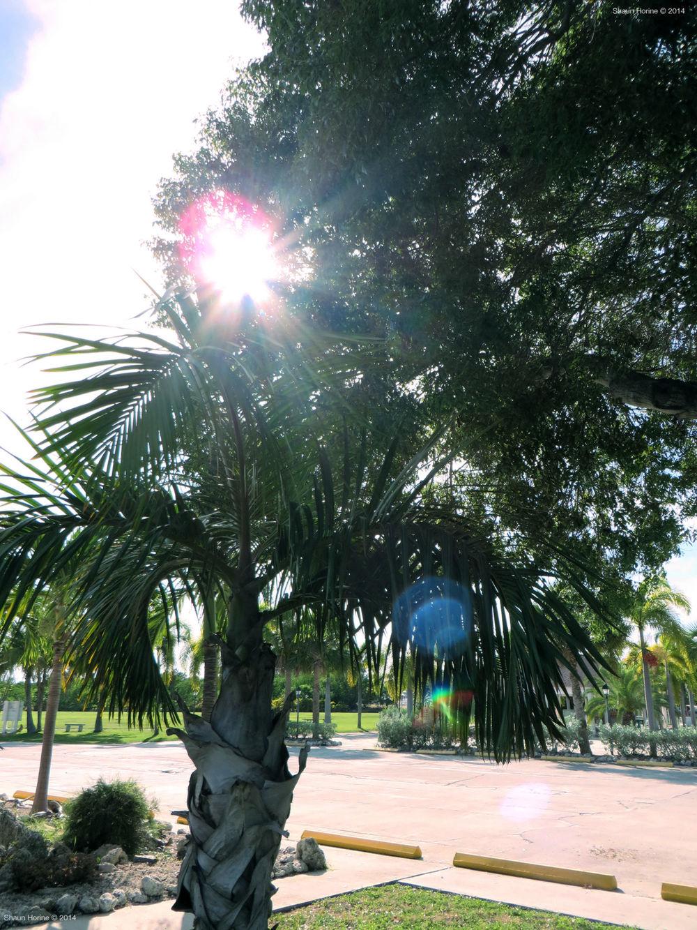 St. Peter's Catholic Church, Big Pine Key, FL.