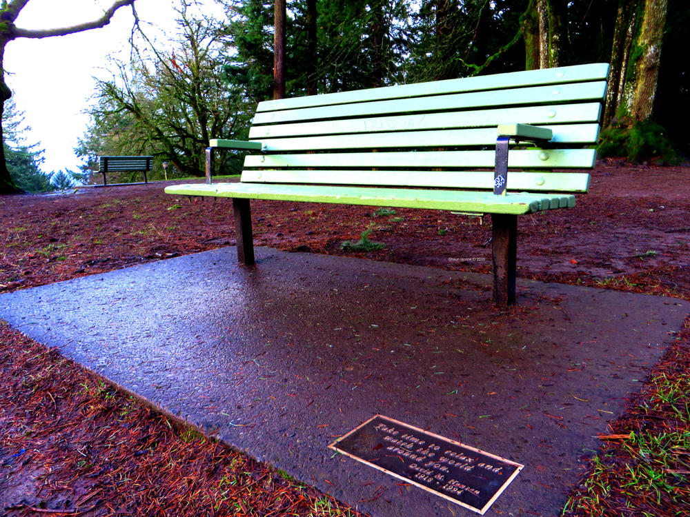 """Take time to relax and watch the world around you.""  Mt. Tabor Park, Portland OR.  Canon SX280 HS"