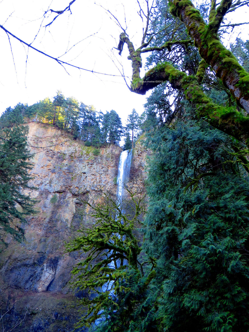 Heading up the trail with one last look back at Multnomah Falls. March 1st, 2015