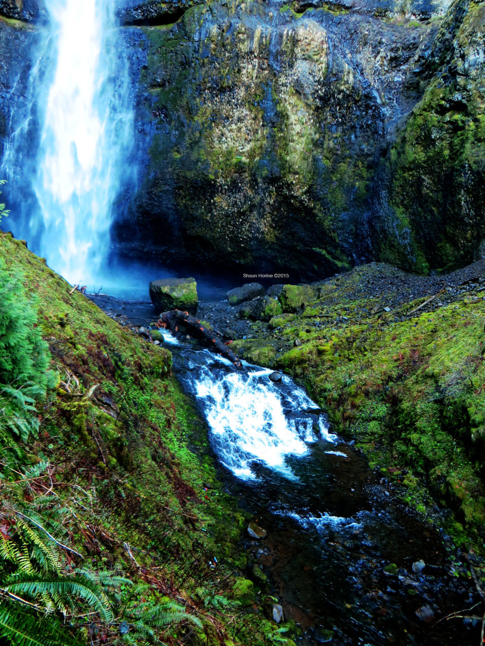 One last view of Multnomah Falls before heading out west. March 1st, 2015