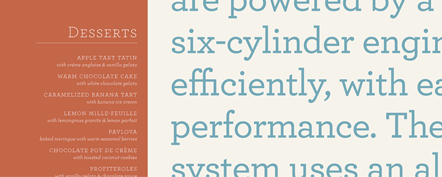 Archer by Hoefler and Frere-Jones.