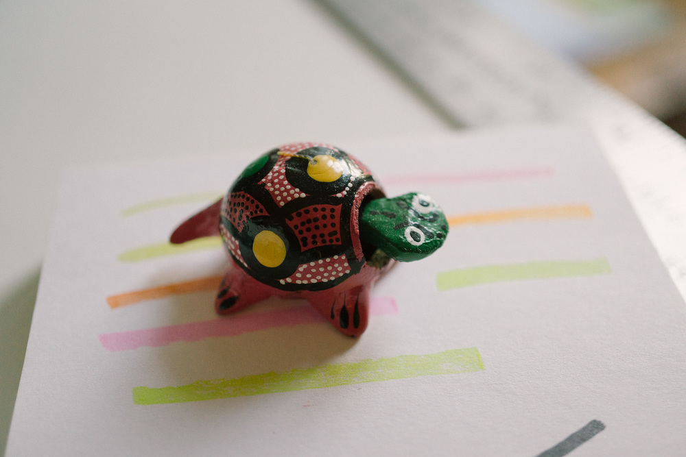 My turtle helps me remember to slow down.
