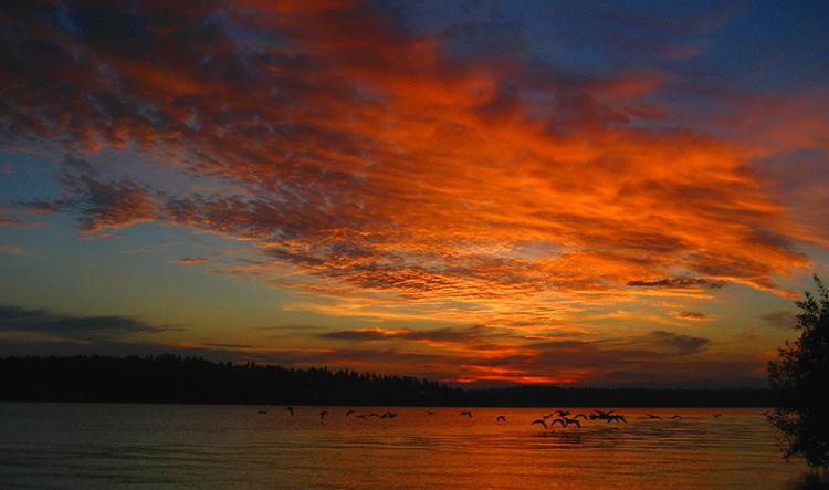 """""""summer sunrise over lake washington"""" by dustin guy (seattle, washington, usa)"""