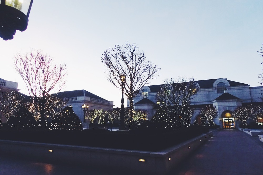 I meant to sleep in on Thursday morning, but since my body was still on Central Time, I woke up unreasonably early. It was pretty to still see the night twinkle lights on the trees at the Grand Americastill on, though.
