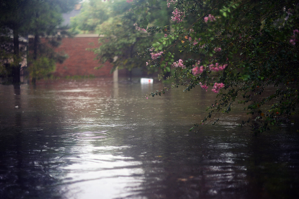 The view from our front door as we waited for our friend to arrive with his kayak, to evacuate.  The first time.