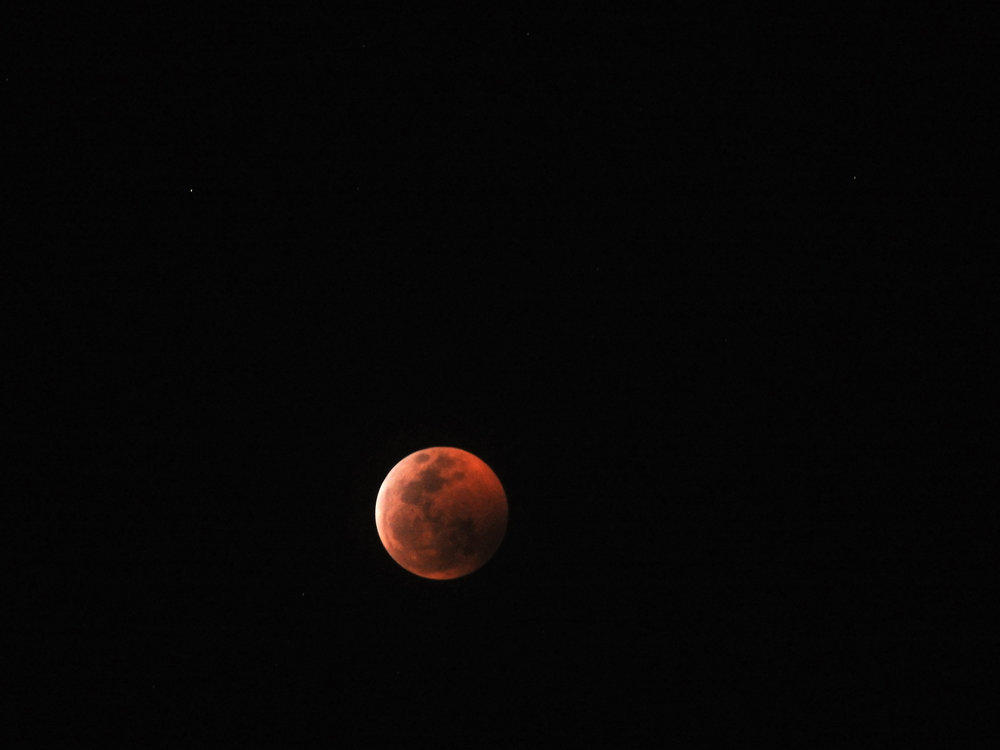 Super Wolf Blood Moon, January 20, 2019. Photo by Marcus.