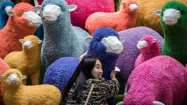 afp.photo.year of the sheep.jpg