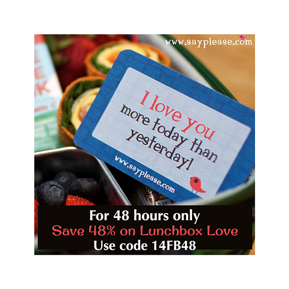 Lunchbox Love 48 sale.png