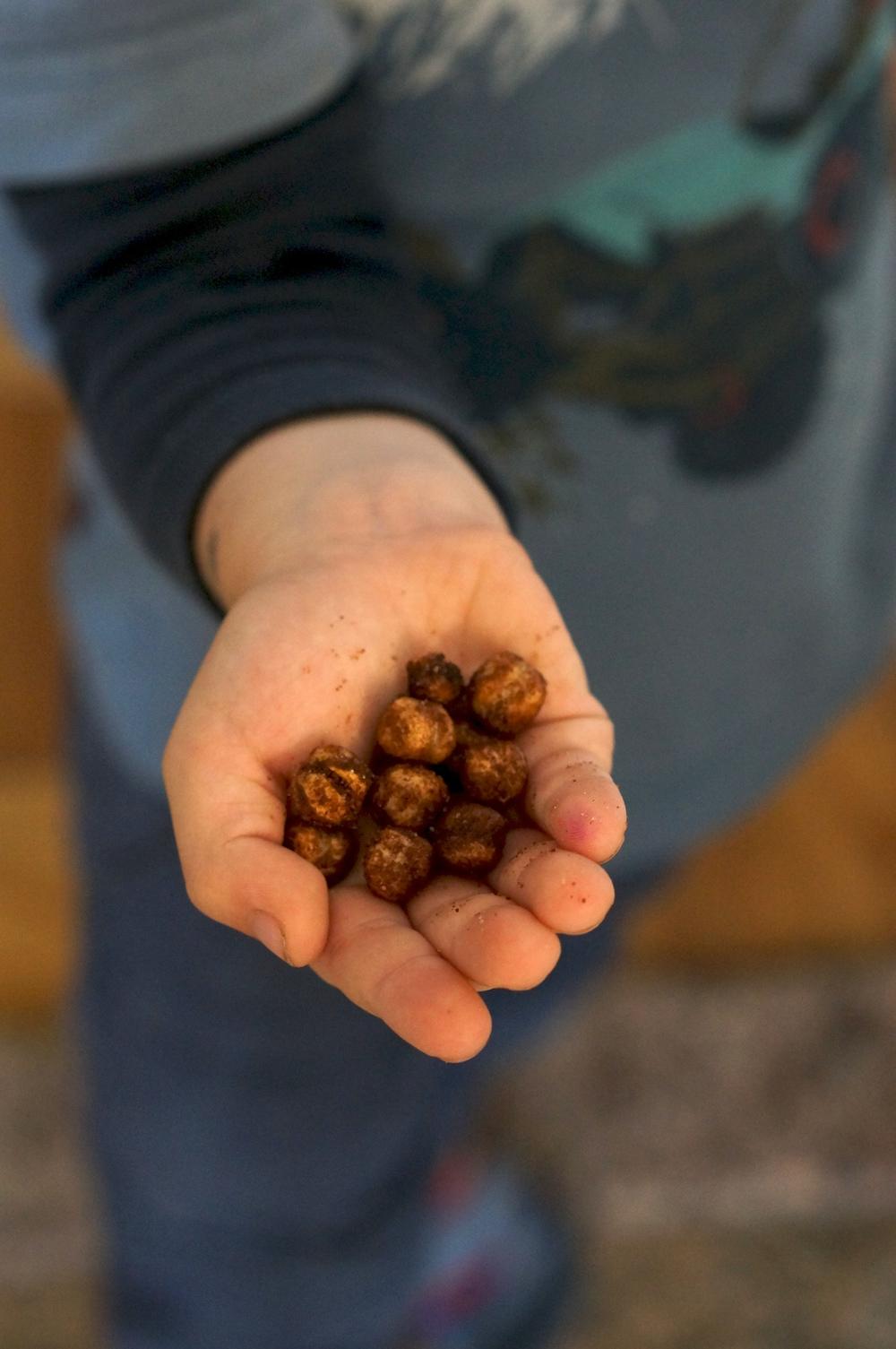 The Good Bean roasted chickpea snacks