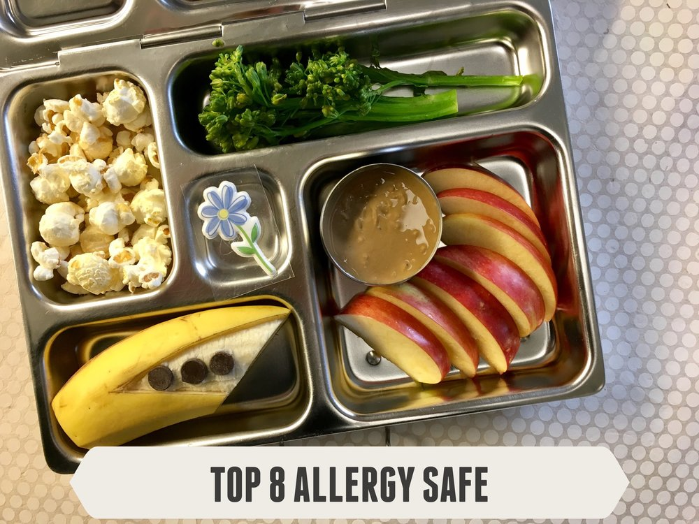 Top 8 Allergy Safe Lunch #1