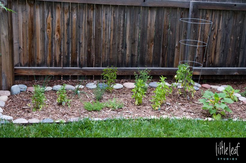 littleleaf_herb_garden.jpg