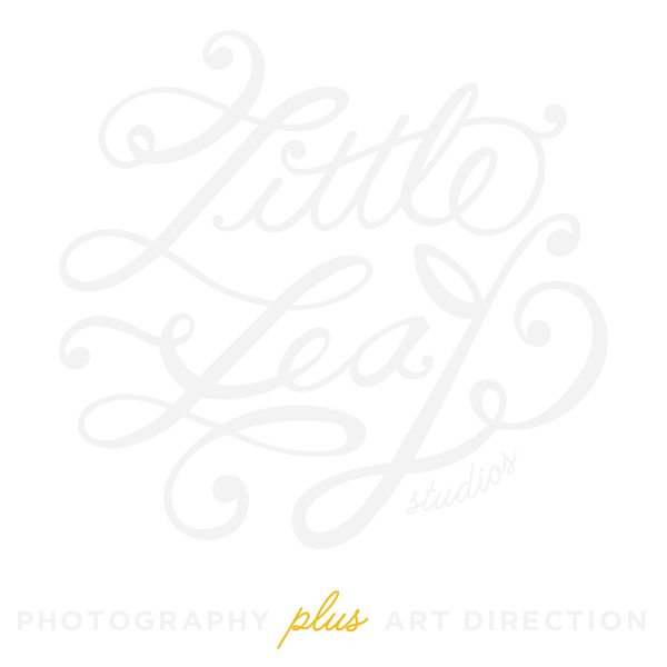 Little Leaf Studios / Photography + Graphic Design
