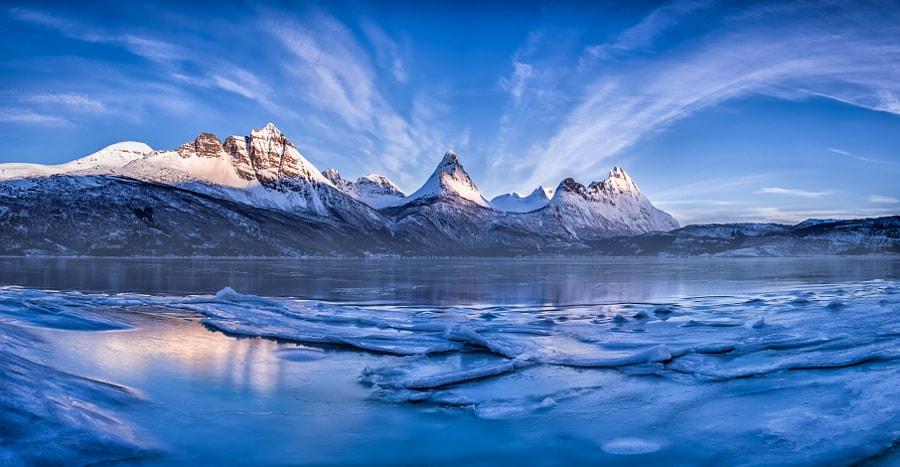 Grovfjord at sunrise